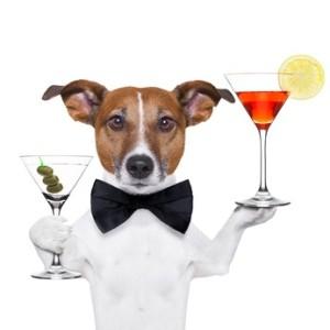 Trink- & Saufspiele